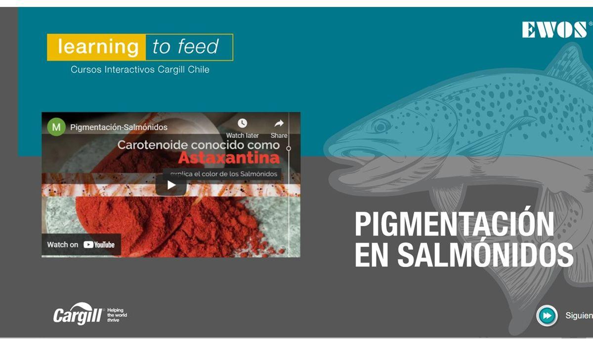 Cargill lanza módulo sobre pigmentación en plataforma www.l2f.cl